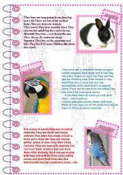 English Worksheet: FACTS ABOUT ANIMALS 3 (domestic animals 2)
