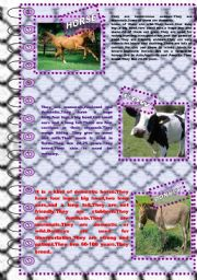 English Worksheet: FACTS ABOUT ANIMALS 5 (farm animals 2)