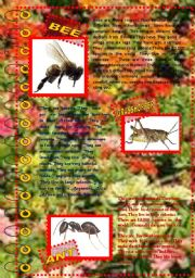 English Worksheet: FACT ABOUT ANIMALS 6 (insects 1)