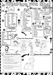 English Worksheets: what are you like ?