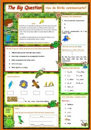 English Worksheet: How do birds communicate - A science Question  3