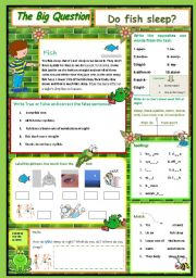 English Worksheet: Do fish sleep? A Science Question 1/10
