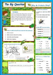 English Worksheets: Why do Crickets Chirp - A science Question   5