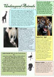 English Worksheets: Undangered animals