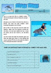 English Worksheet: A DOLPHIN TRAINER