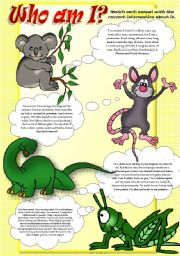 English Worksheet: ANIMAL FACTS (Part I)
