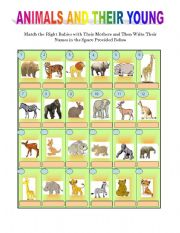 animals and their young esl worksheet by briliya. Black Bedroom Furniture Sets. Home Design Ideas