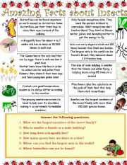 English Worksheet: Amazing Facts about Insects...Reading Comprehension Worksheet.