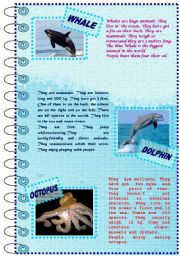 English Worksheet: FACTS ABOUT ANIMALS SET (sea animals 1)