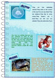 English Worksheet: FACTS ABOUT ANIMALS SET(sea animals 2)