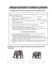 English Worksheets: African elephants X Indian elephants