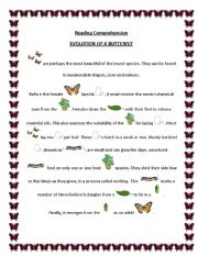english worksheet evolution of a butterfly. Black Bedroom Furniture Sets. Home Design Ideas