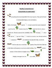 Evolution of a Butterfly - ESL worksheet by briliya
