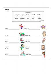 English Worksheets: SENSES