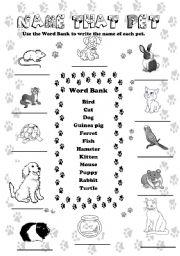 English Worksheets: Name That Pet