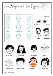 English Worksheet: Face Shapes and Hair Types