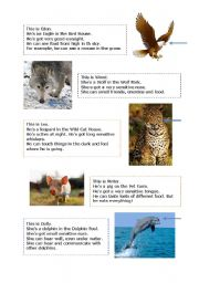 English Worksheets: animals and senses