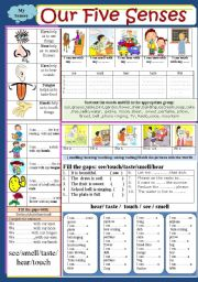 English Worksheet: Body : Our five senses