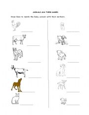 Worksheets Animals And Their Young Ones Worksheet english teaching worksheets baby animals and their babies