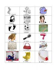 English Worksheets: words beginning human organ