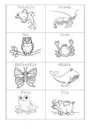 English Worksheets: MINIFASHCARDS- ANIMALS