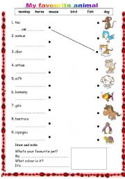 English teaching worksheets: Pets