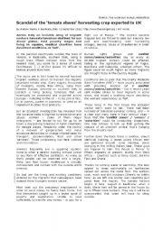 English Worksheets: Reading Comprehension: