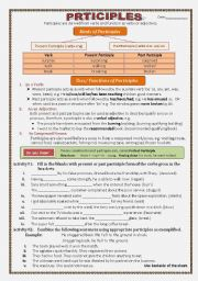 English Worksheet: participles
