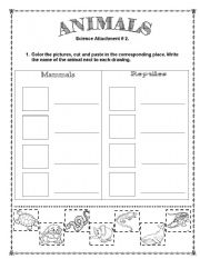 Printables Mammal Worksheets english worksheets mammals page 4 animals vertebrates mammals