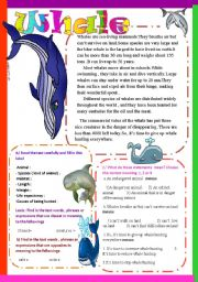 English Worksheet: Whale
