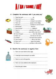 English Worksheet: QUANTIFIERS: A/AN/SOME/ANY/HOW MUCH/HOW MANY