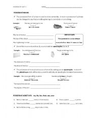 English Worksheet: Possessive nouns workshop