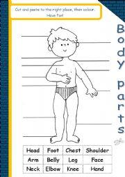 English Worksheets: Body parts*editable*