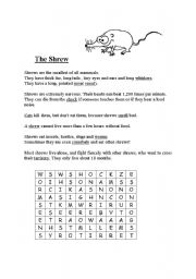 English Worksheets: The Shrew