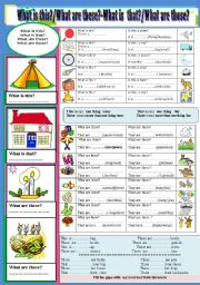 English Worksheets: What is this?/that?/these?/those?