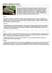 English Worksheets: croc facts gapfill