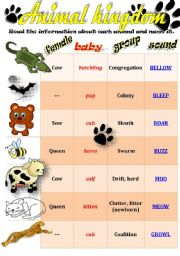 English Worksheet: ANIMALS: baby animals, females, groups and sounds