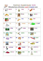 Plural Nouns – Regular & Irregular (2 of 3)