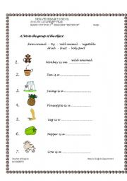 English Worksheets: first semester revision 1st grade