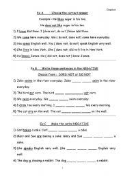 English Worksheets: Negative