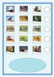 English Worksheets: Who is the biggest mammal?