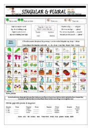 English Worksheet: Singular & Plural