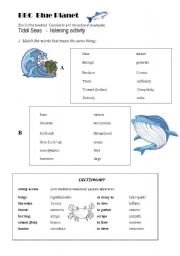 English Worksheet: Listening:  BBC Blue Planet - Oceans and Sea life