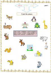 English Worksheets: aminals part1