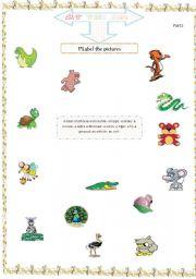 English Worksheets: animals part2