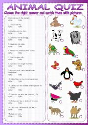 graphic regarding Animal Trivia Questions and Answers Printable identified as Quizzes worksheets