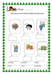 English Worksheets: payam
