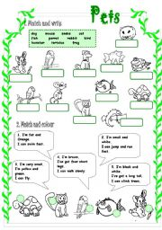 English Worksheets: PETS (1/3)