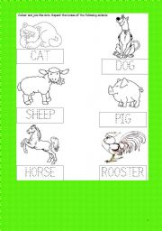 English Worksheets: ANIMALS ACTIVITY CARD -Join the dots- colour - Cat-Dog-Sheep -Pig-Horse-Rooster- kindergarten
