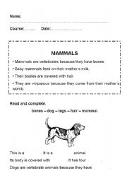 mammals worksheets. Black Bedroom Furniture Sets. Home Design Ideas